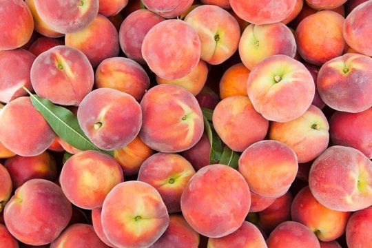 The Peach Truck to visit Lafayette!