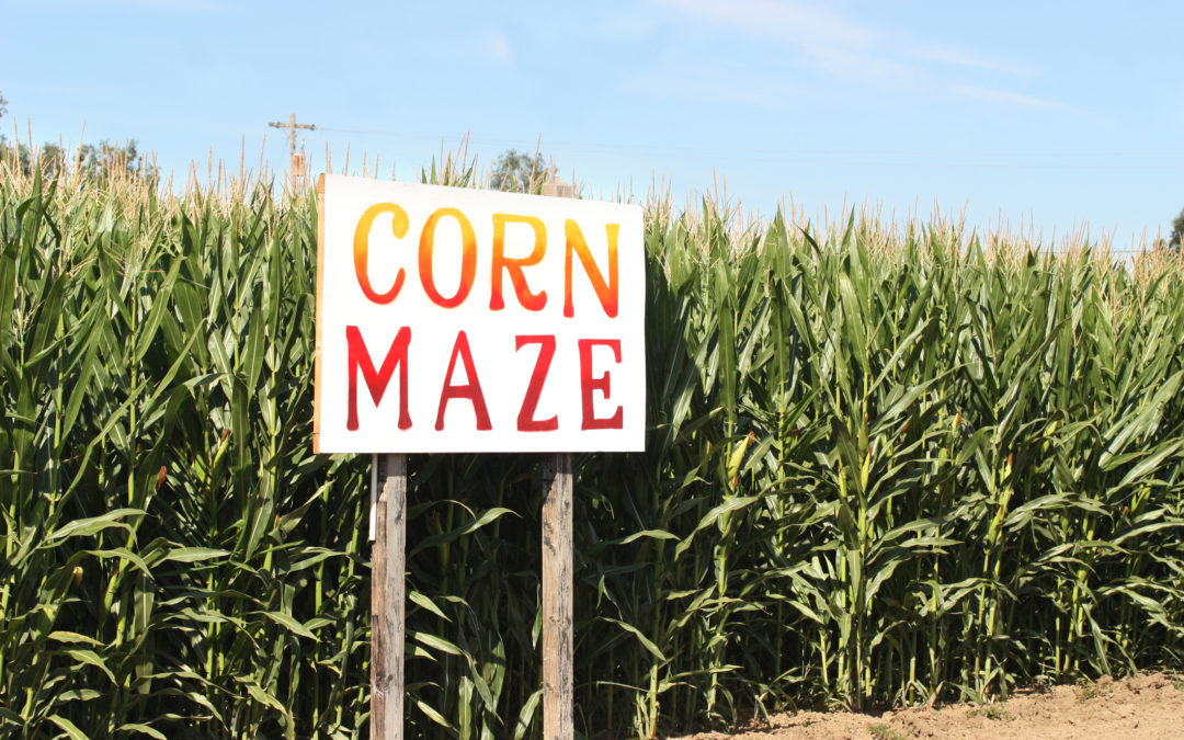 Corn Mazes of Greater Lafayette, Indiana