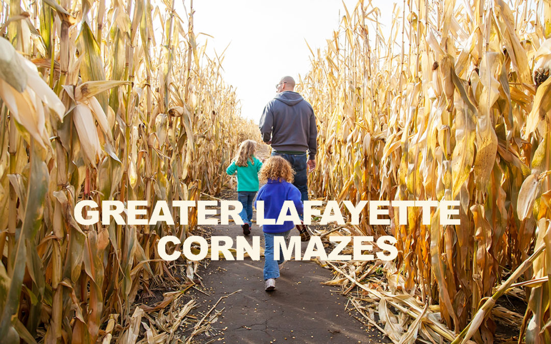 Corn Mazes Around Greater Lafayette