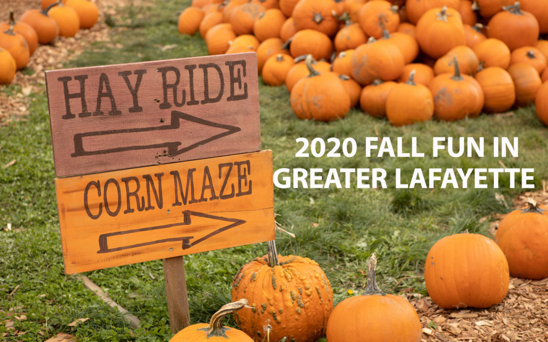 2020 Pumpkin Patches, Corn Mazes & Farms